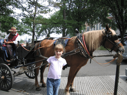 quebec city-with horse and caleche