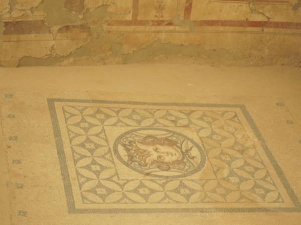 turkey-ephesus-Terrace Houses-Mosaic Floors