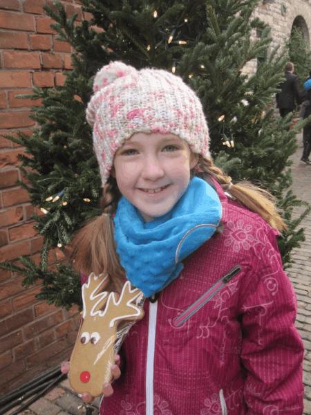 Toronto Christmas Market-Gingerbread Reindeer Cookies!