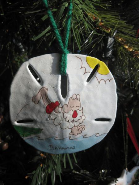 Bahamian Santa on a Sanddollar-Christmas ornament