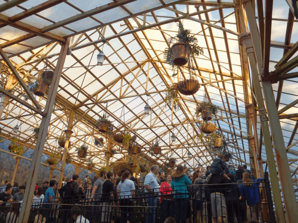 Orlando-Wizarding World of Harry Potter-Queue through Hogwarts' Greenhouse