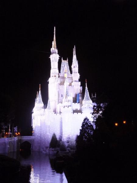 Disney World-Cinderella's Castle at night