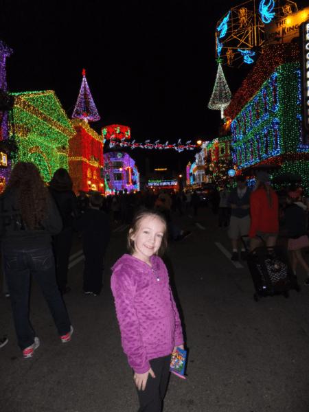 Disney World-Osborne Family Lights