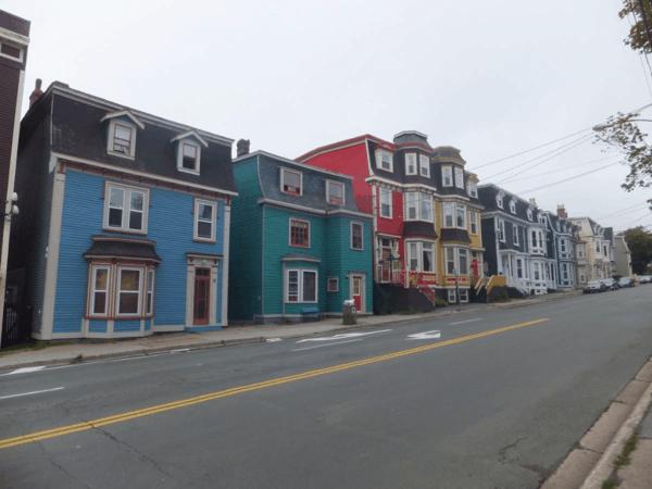 newfoundland-st. john's-colourful houses