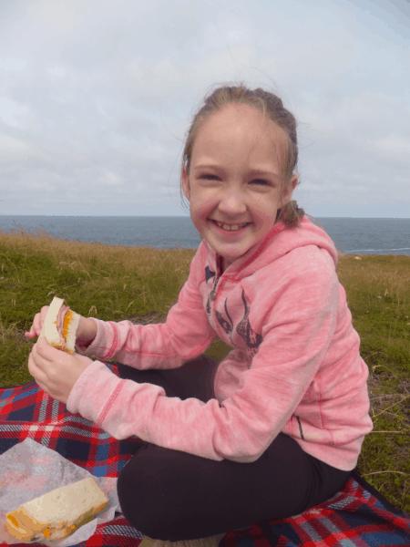 Newfoundland-Ferryland Lighthouse picnic lunch