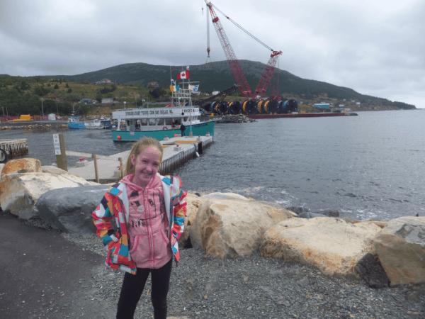 Newfoundland-Bay Bulls-Witless Bay tour