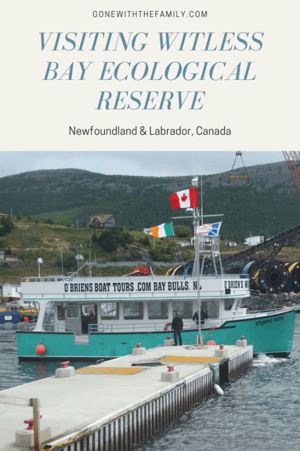 Visiting Witless Bay Ecological Reserve in Newfoundland  Canada - Gone with the Family
