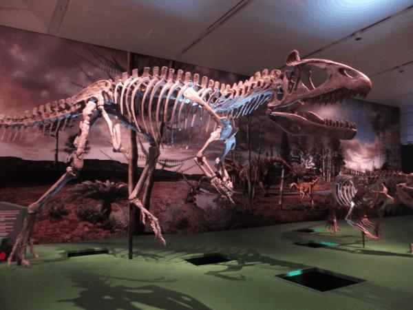 Toronto-ROM-Ultimate Dinosaurs Exhibit