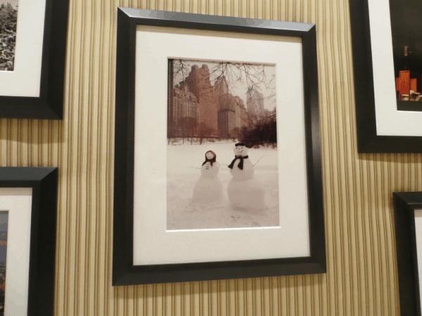 New York City-Essex House-Photos of Central Park