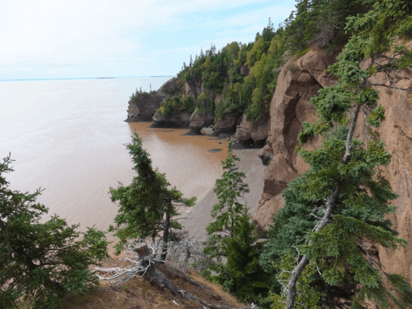 New Brunswick-Hopewell Rocks-Bay of Fundy tide coming in