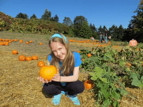 Ontario-Springridge Farm-pumpkins