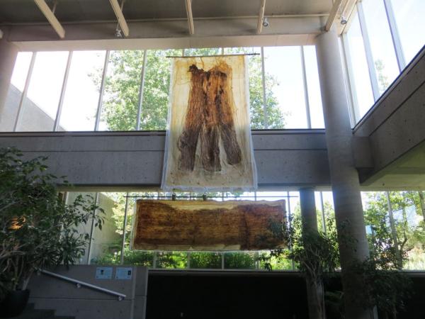 Royal botanical gardens-earth art exhibition-earth skins
