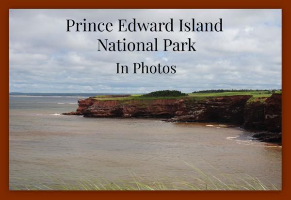 Prince Edward Island-red cliffs-graphic