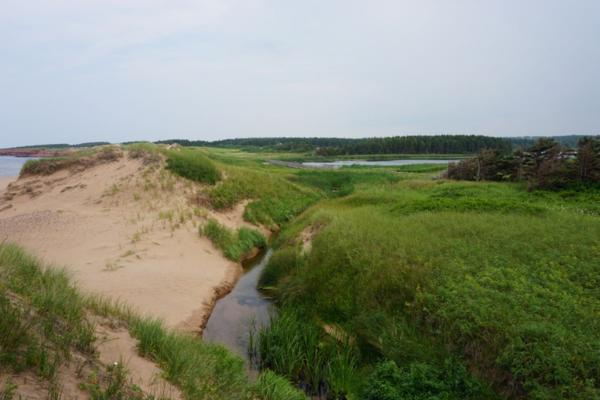 Prince edward island national park-cavendish beach-sand dunes