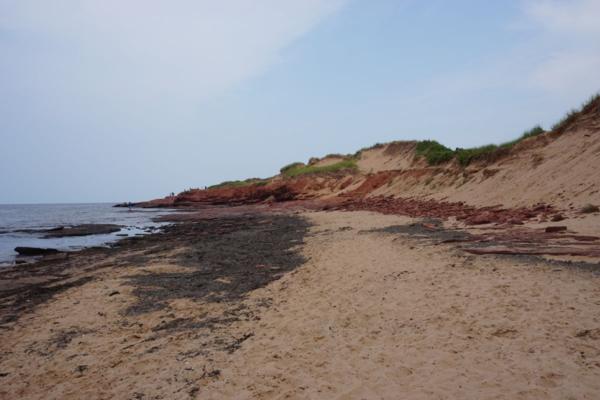 Prince edward island national park-cavendish beach-red cliffs