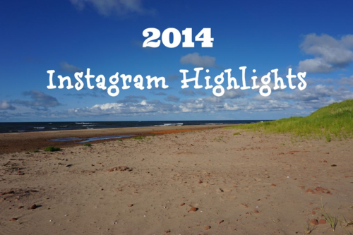 2014 instagram highlights