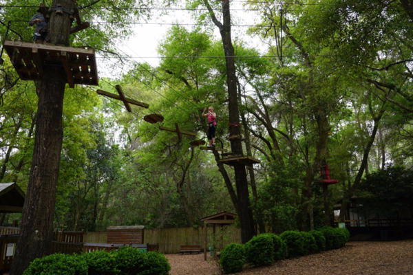 Florida-tallahassee museum-high ropes obstacle course