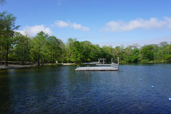Florida-tallahassee-wakulla springs-swimming platforms