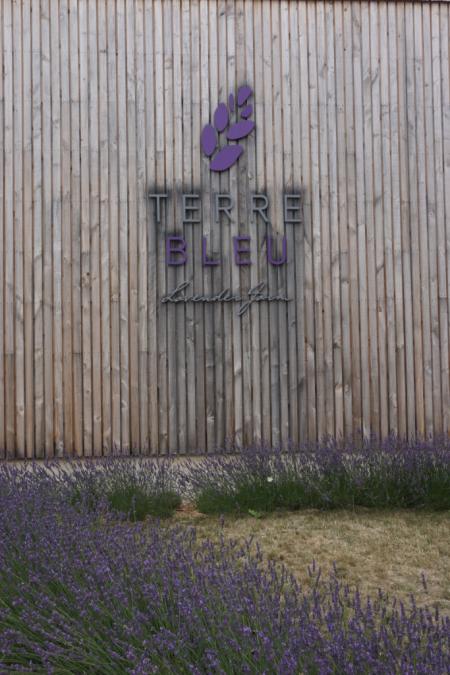 Terre bleu lavender farm-entrance
