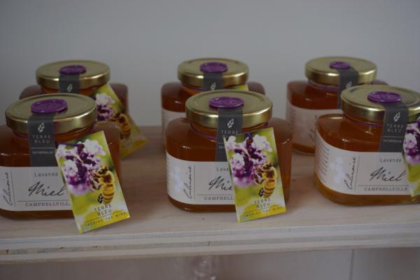 Terre bleu lavender farm-gift shop-lavender honey