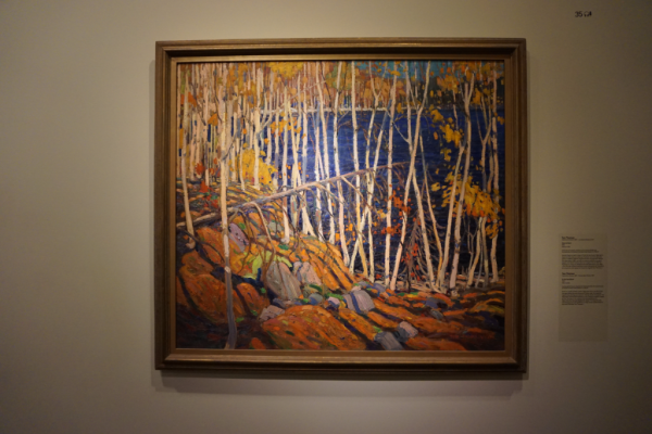 Montreal museum of fine arts-tom thomson painting