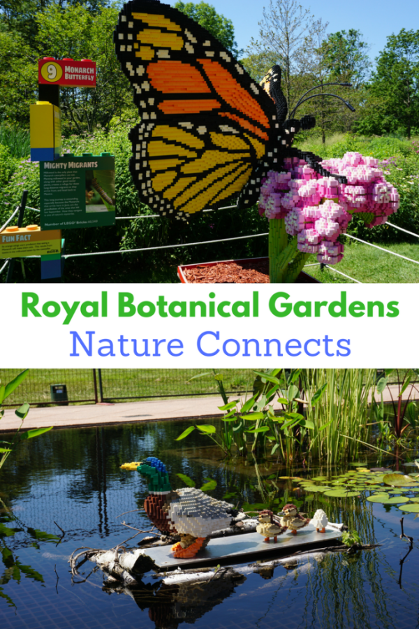 Royal Botanical Gardens - Nature Connects - Gone with the Family