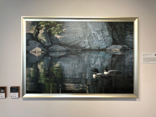 Victoria british columbia-robert bateman centre-painting Northern Reflections - Loon Family