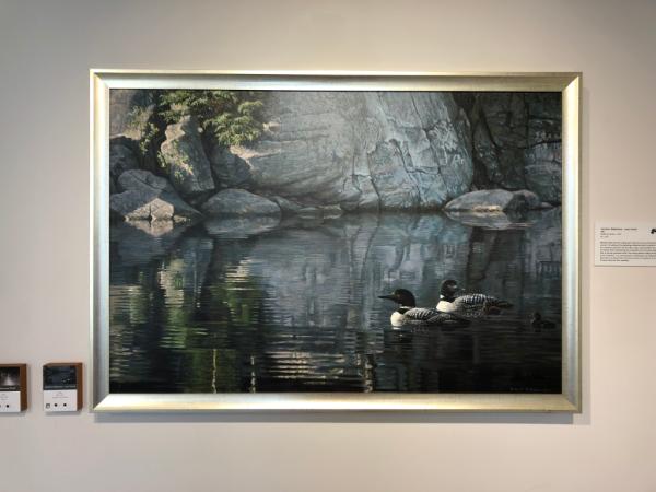 Victoria british columbia-robert bateman centre-painting Northern Reflections - Loon Family
