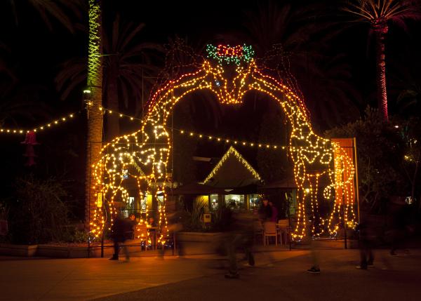 Zoo_Lights_-Courtesy_San_Diego_Zoo