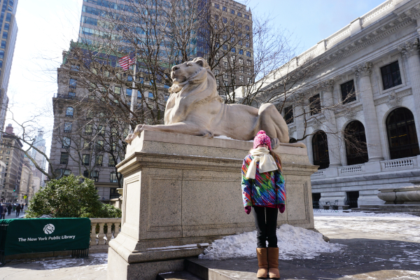 New york city-winter-outside new york public library