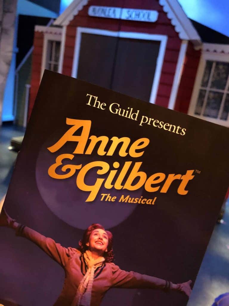 anne and gilbert program