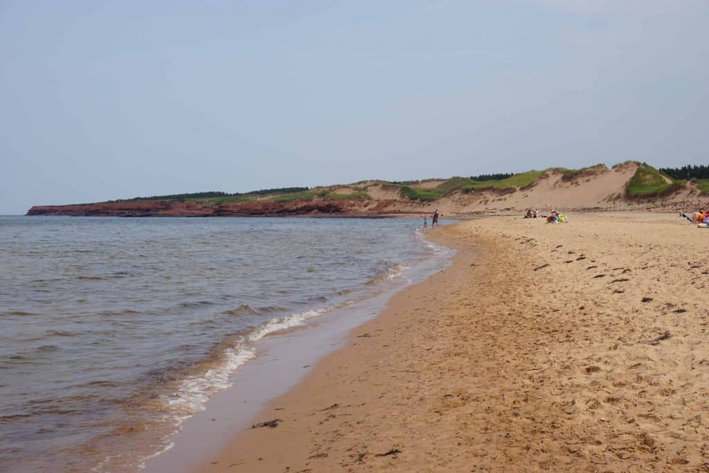 sandy beach and red cliffs-prince edward island