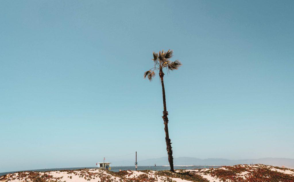 Playa del Rey beach